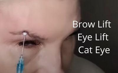 Brow Lift   Eye Lift   Cat Eye   23g threads   Get Glowing Now Skin Care.com  DIY55 15%