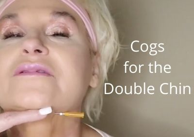 Cogs for the Double Chin   Good Cog for Beginners